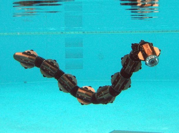 HiBot демонстритует нового земноводного робота-змею.
