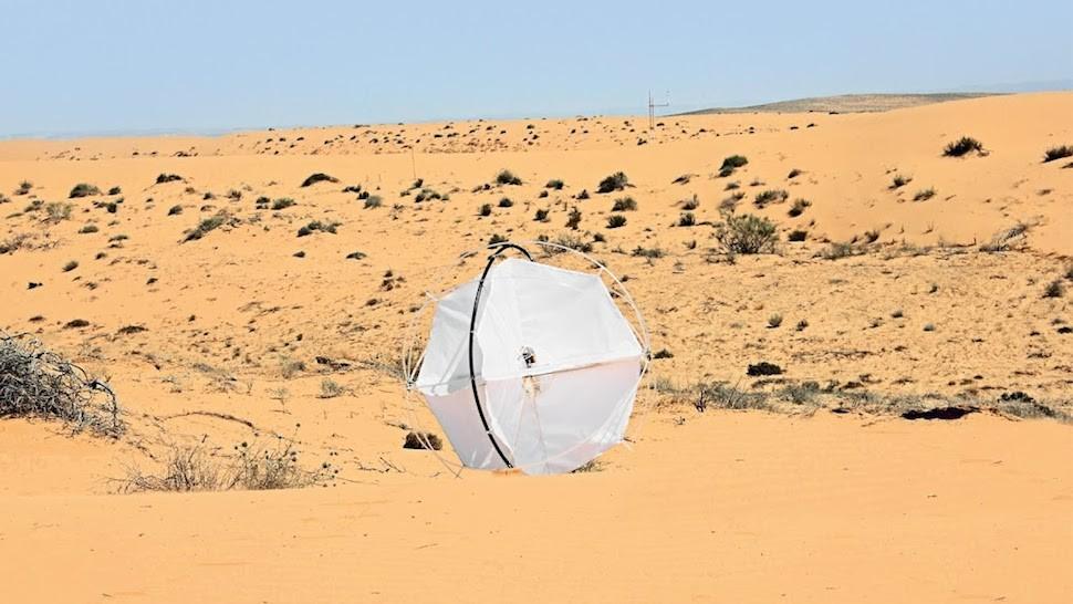 Робот Перекати-поле поможет предотвратить опустынивание Земли!