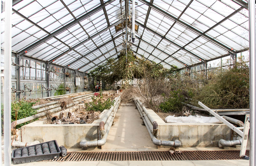 Drone_Adventures_Fukushima_School_Greenhouse
