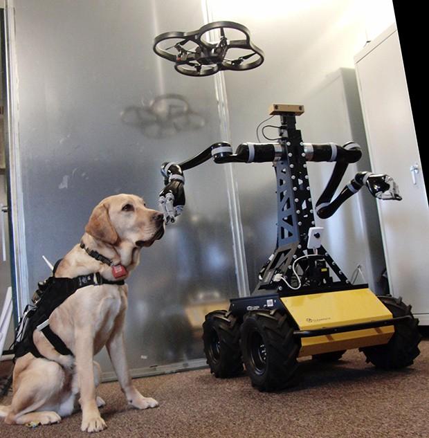 Dogbot-sidebar-1399373695860