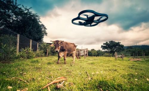 Новый журналистский проект будет документировать происходящее на промышленных фермах