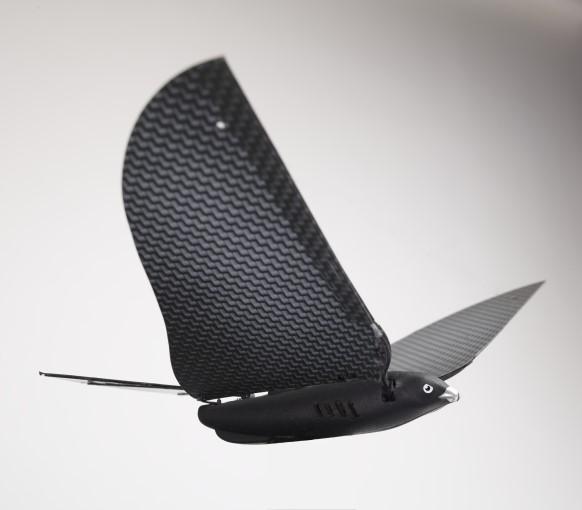 bionic-bird-0