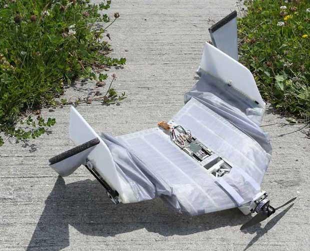 Летающий робот(летучая мышь) может после приземления —  продолжить движение!