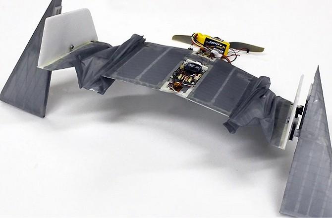 Дрон-летучая мышь на земле и в воздухе