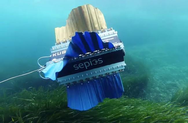 Швейцарцы создали Роботизированную рыбу  для съемки под водой