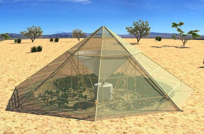 Собирающие росу парники для выращивания овощей в условиях пустыни
