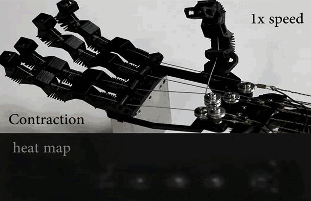 Обычные швейные нитки могут стать основой для мощных искусственных мышц