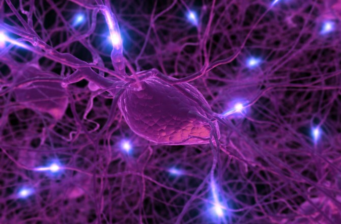 Наночастицы «вай-фай» посылают сигналы из мозга