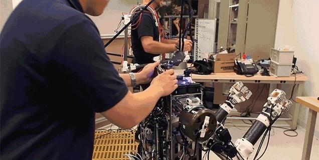 Массачусетский робот имеет идеальный баланс и молниеносные рефлексы
